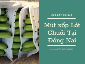 mut-xop-lot-chuoi-tai-dong-nai