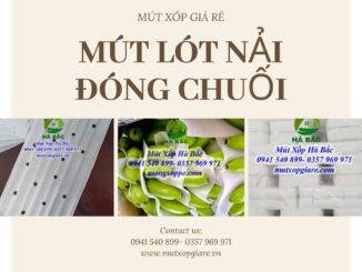 mut-lot-nai-dong-chuoi-tai-dong-nai