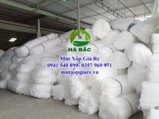 mut-xop-6